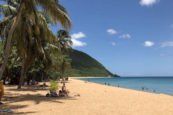 Plage de Grande Anse, Deshaies