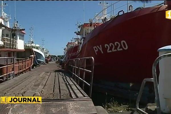 Les pêcheurs Marquisiens redoutent l'arrivée des thoniers tahitiens