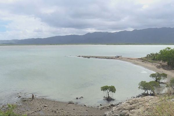 Baie de Foué, Koné