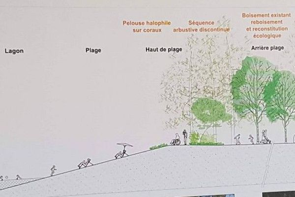 Projet végétalisation Saint-Paul 040918