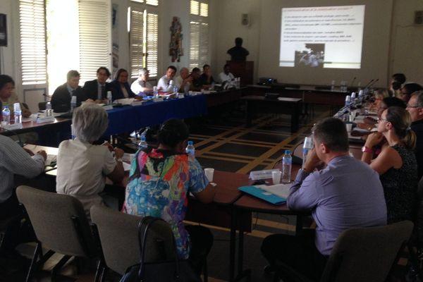 Comité de gestion du Chikungunya à Basse-Terre