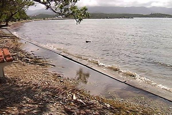 tsunami fausse alerte