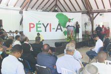 Rentrée du mouvement Péyi-A (17 janvier 2021 au Lamentin).