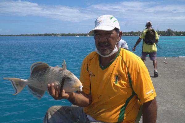 Pêche baliste