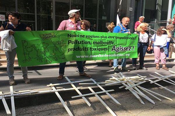 Cobaye : marche sur Paris
