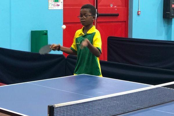 Tennis de table : derniers échanges avant les Championnats Antilles-Guyane