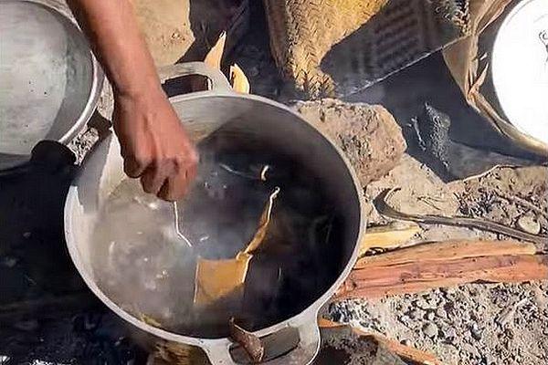 Chute de peau de zébu pour se nourrir Madagascar juin 2021