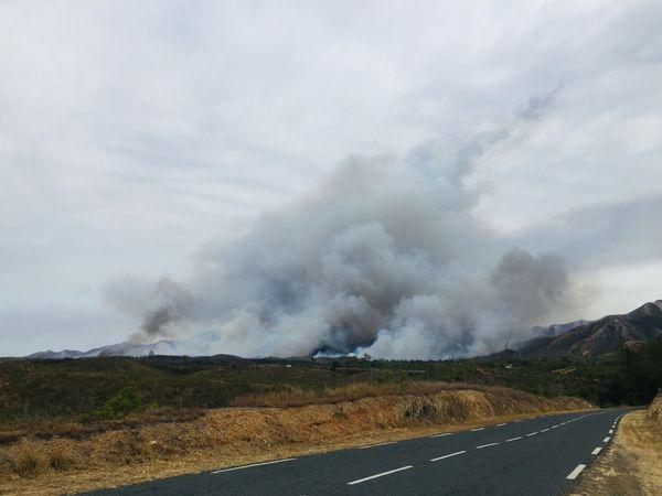 Incendie Arama