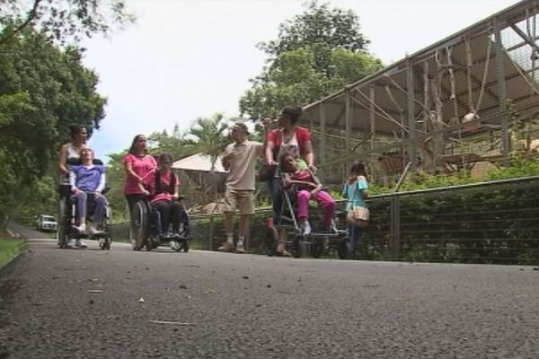 parc forestier : accessibilité pour personnes ayant un handicap
