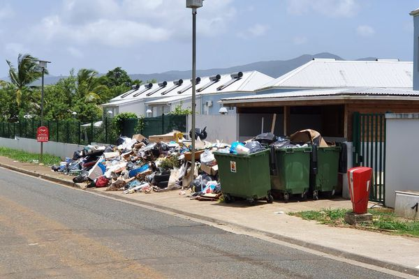 Les ordures de Mapoca