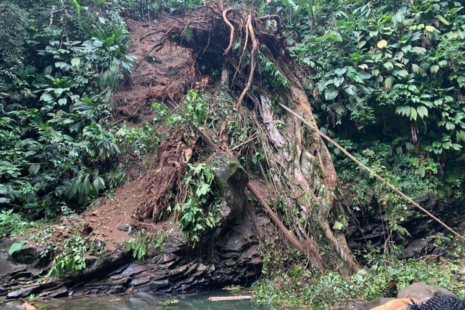 Éboulement à la rivière, à Saint-Claude : une femme grièvement blessée - Guadeloupe la 1ère