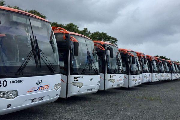 Bus Raï