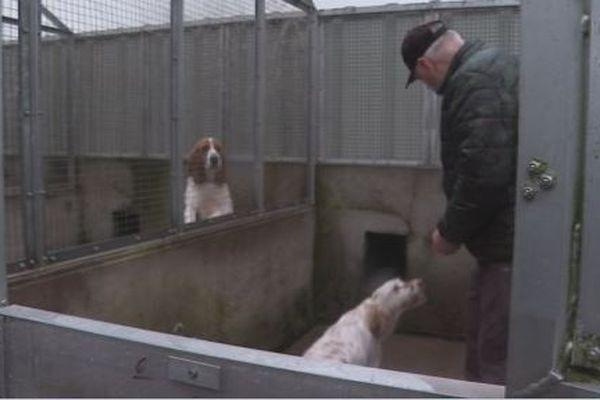SPM 3A relance cet hiver une campagne de sensibilisation destinées aux propriétaires de chiens pour protéger leur compagnon du froid
