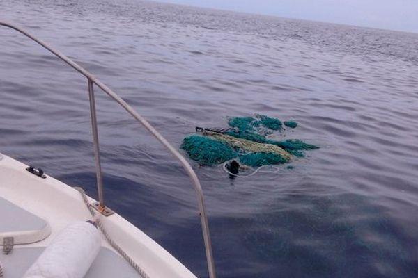 Epaves piège à tortue