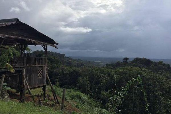 Guyane : la restitution des terres aux Amérindiens à la peine
