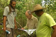 Chercheur et agents du Parc Naturel Régional procèdent à l'inventaire de la forêt de la Caravelle
