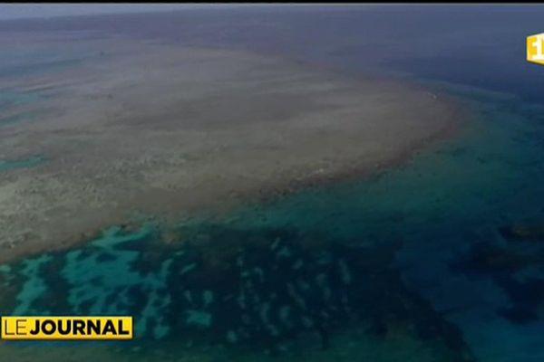 Quelle éco gestion pour le parc calédonien de la mer de corail ?