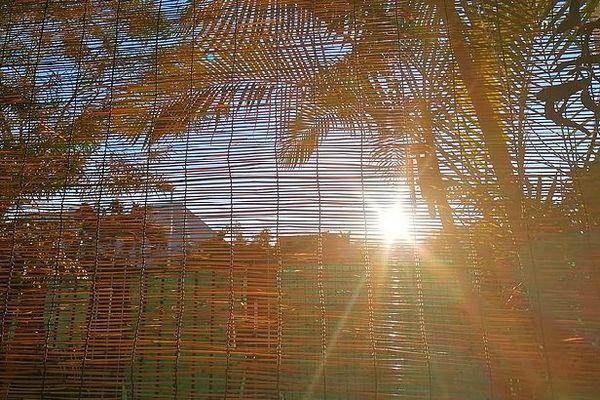 soleil derrière un caillebotis