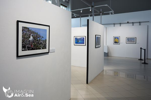 exposition photo mathieu marcias