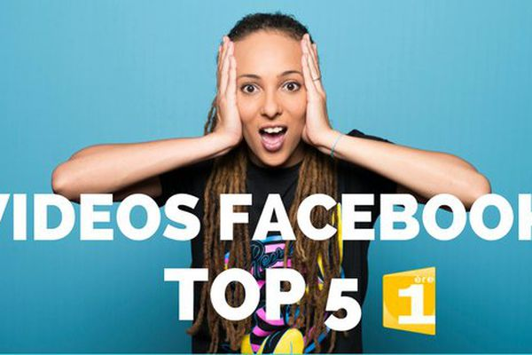 Best of videos facebook