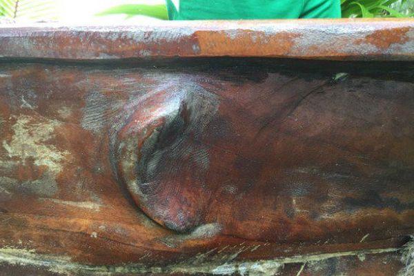 Raivavae : la seule île de Polynésie où les pirogues sont cousues main