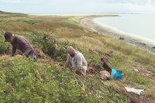 Mission archéologique au Grand Barachois à Miquelon