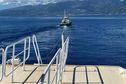 Le Apetahi express tombé en panne entre Tahiti et Moorea a été ramené à Papeete