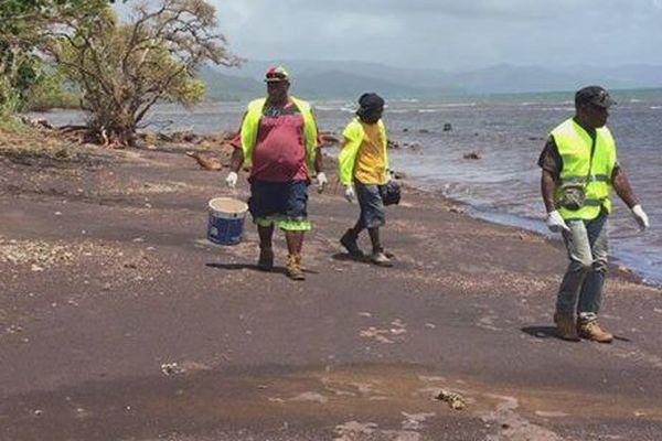 Pollution aux boulettes de fioul: opération de ramassage à Ponérihouen (30 novembre 2017)