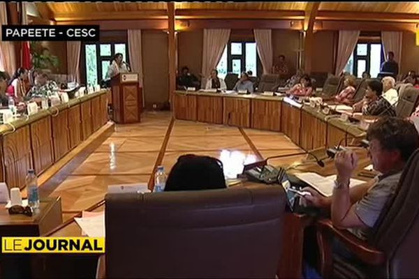 Edouard Fritch dévoile le budget 2015 au CESC