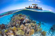 Récifs coraliens dans le lagon de Mayotte. Photo d'illustration.