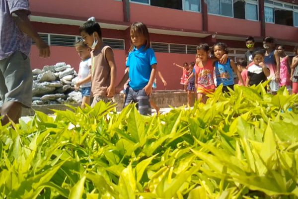 jardin potager Hao
