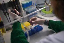 Les tests positifs sont désormais systématiquement analysés une seconde fois pour déterminer s'il s'agit d'un variant britannique, sud-africain ou brésilien du coronavirus