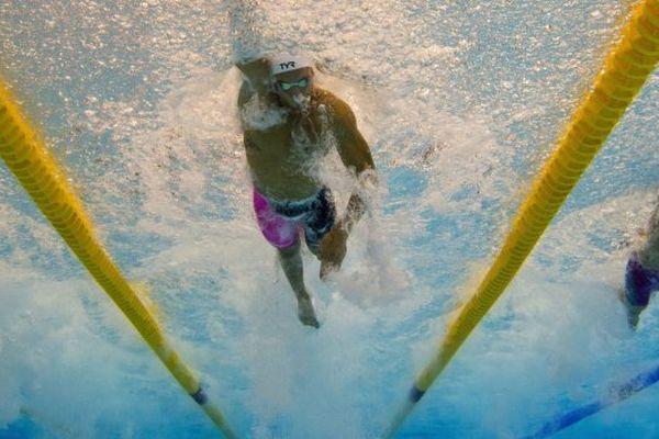 Championnats de France 2015 de natation