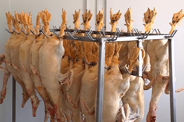 Foie gras Miquelon