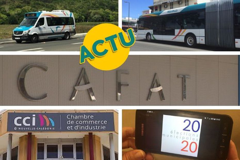 Transports, santé, économie, débat : l'actu à la 1 du jeudi 2 juillet 2020 - Nouvelle-Calédonie la 1ère