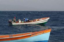 Scène de pêche aux larges des côtes (image d'illustration)