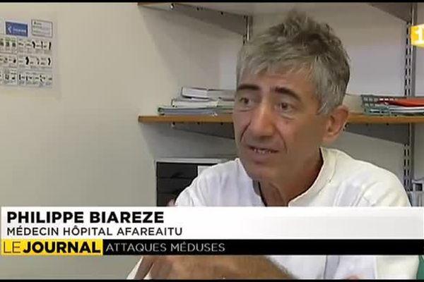 Les méduses perturbent les activités nautiques de Moorea