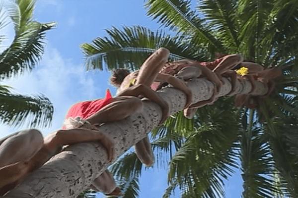 Championnat du monde de grimper de cocotier