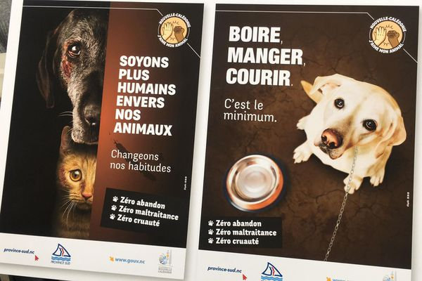 CAMPAGNE CONTRE LA MALTRAITANCE ANIMALE, septembre 2020