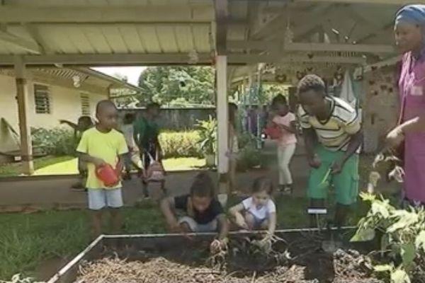 Environnement : le potager bio de la maternelle de la Roseraie