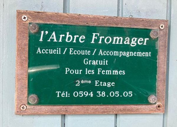 L'arbre fromager