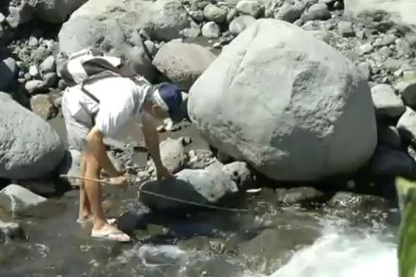 pêche à la tate