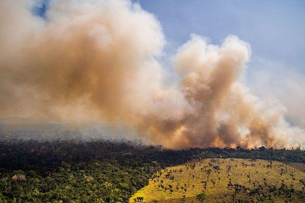 Déforestation et feu en Amazonie