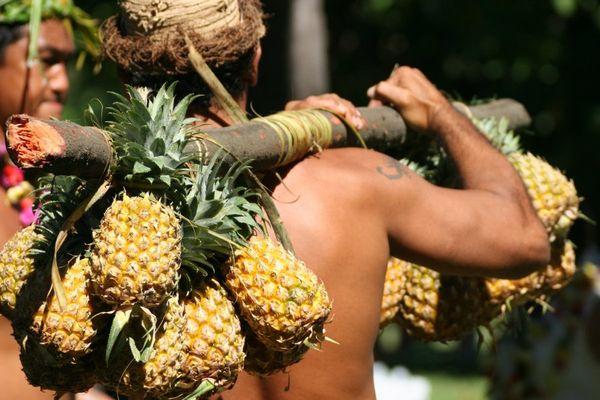 course porteurs de fruts polynésie