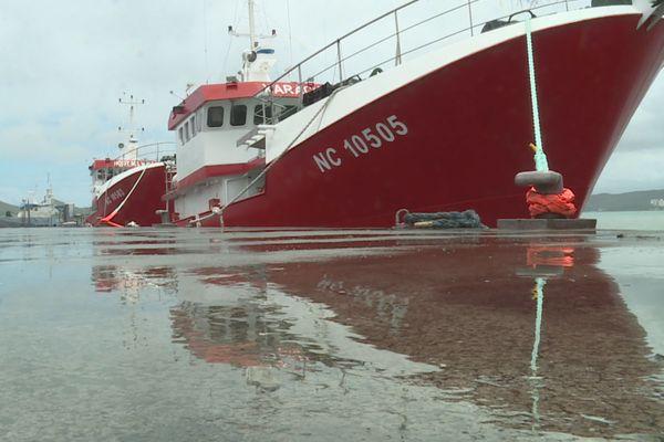 Navimon achève de renouveler sa flotte, pêche hauturière, 13 novembre 2020