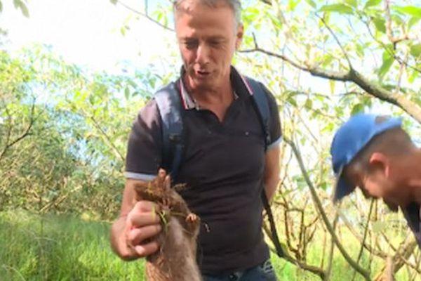 Un jour avec... les chasseurs de tangues