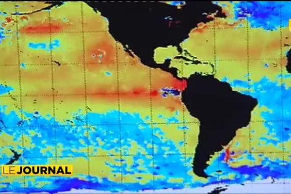 El niño + réchauffement climatique = écosystèmes en danger