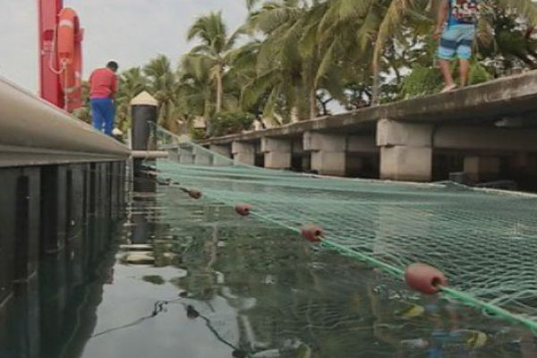 parc à poissons papeete