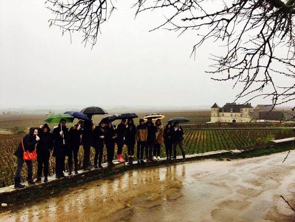 Angélique a suivi une formation de sommelière à Avignon avec des voyages de formation, ici en Bourgogne.