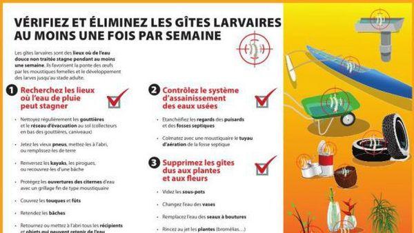 Les bons gestes pour éliminer les gîtes à moustiques